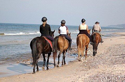 Riding horses on Amelia Island