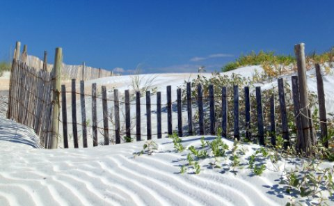 Ft Walton Florida man-made sand dune