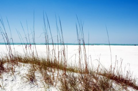 siesta key beach scene