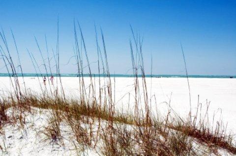siesta key beach scene